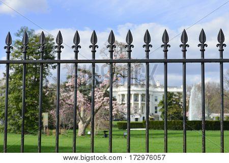 Washington DC in springtime - The White House