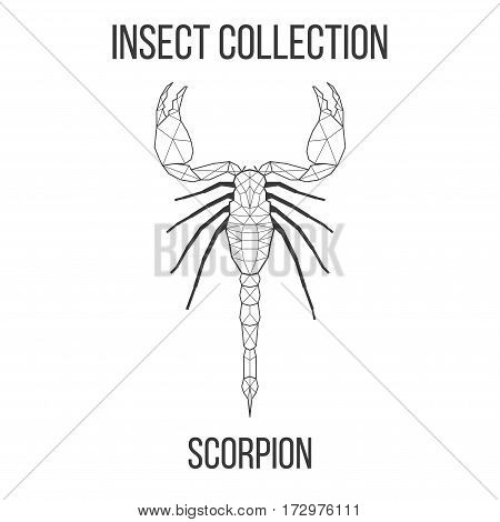 Scorpion insect geometric lines silhouette isolated on white background vintage vector design element illustration