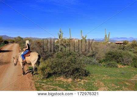 Beautiful blonde riding buckskin horse on desert horse trail