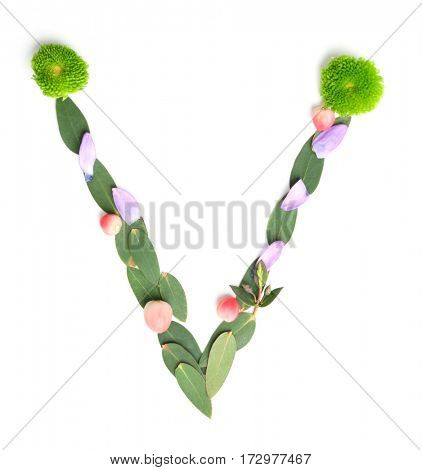 Letter V made of flowers and herbs on white background