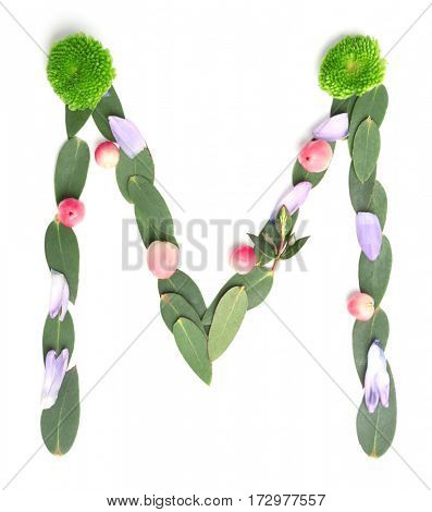 Letter M made of flowers and herbs on white background