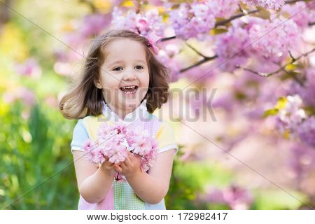 Little Girl With Cherry Blossom