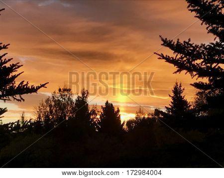 Montana hunting sunrise with a blaze orange sky