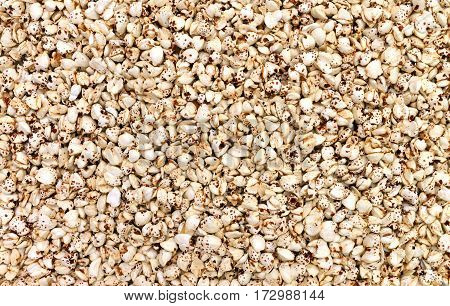 expanded buckwheat seeds texture food pufarin pattern