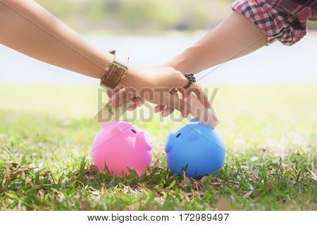 hands of young men and young women cross to putting money into colorful piggy bank pigs on the lawn to keep a family. Couple saves money with piggy bank.
