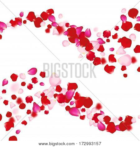Rose petals falling background. For presentations, invitation ad print. Wedding valentine love concept.