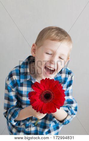 Cheerful Little Boy With Flower