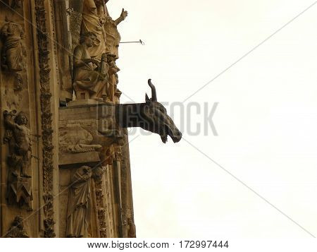 gargoyle Cathedral gothic statues architecture middle age smile angels religion religion