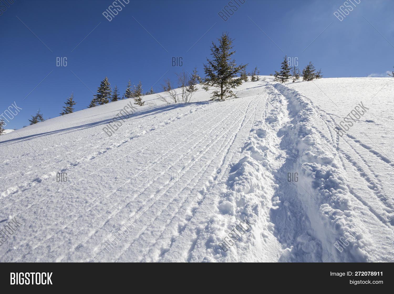 Beautiful Winter Image & Photo (Free Trial) | Bigstock