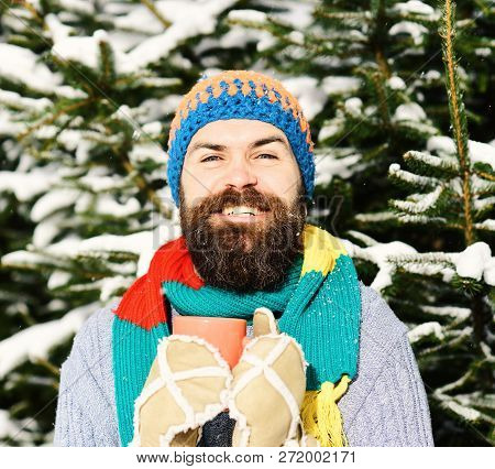 Warming Drinks Concept. Guy With Firtrees Covered With Snow .