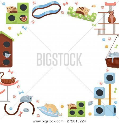 Round Frame Of Cat Accessories. Cats And Their Houses On White Background. Different Feline Equipmen