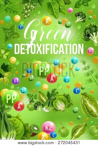 Color Detox Diet Poster Of Green Food Day. Cabbage And Broccoli, Grapes And Gooseberry, Kiwi And App