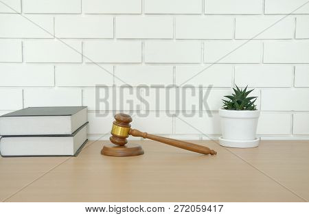 Legal Law Book & Judge Gavel Near White Brick Wall. Lawyer Attorney Justice Workplace. Succulent Cac