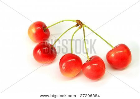 Five cherries poster