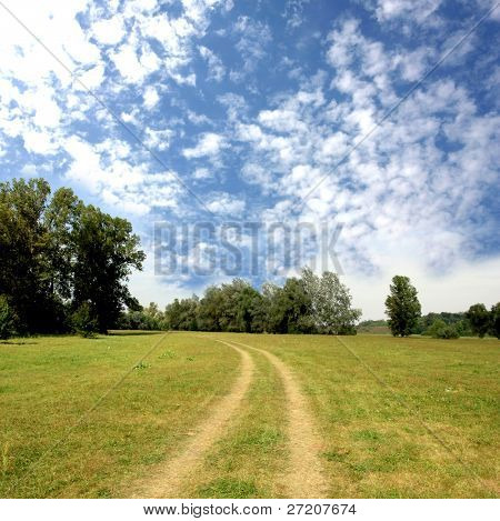 Rural road in the meadow
