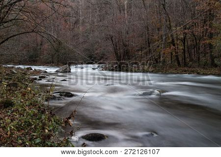 A River Flowing Through A Forest.  Great Smoky Mountains National Park, Tennessee, Usa.