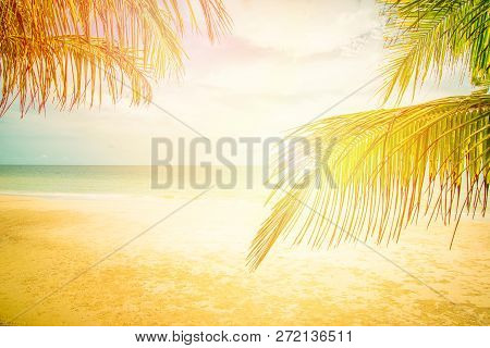 The beach sea over sun / coconut palm and tropical beach - palm tree foreground and ocean background Concept Summer Beach Relax summer holiday