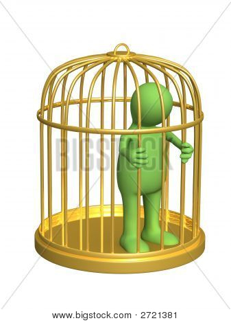 The 3D Person - Puppet, Worth In A Gold Cage