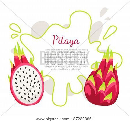 Pitaya Or Pitahaya Exotic Juicy Fruit Vector Poster Frame And Text. Tropical Edible Food, Dieting Ve