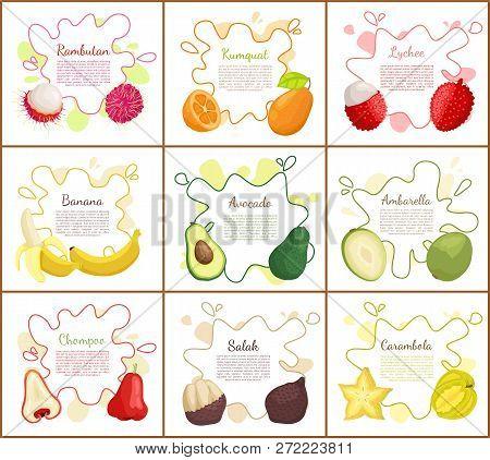 Rambutan And Banana, Avocado And Lychee Posters Set With Text Sample. Kumquat And Delicious Chompoo,