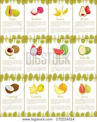 Pomelo And Longan, Coconut And Citron, Passion Fruit And Mango Slice. Carambola And Cupuacu, Papaya