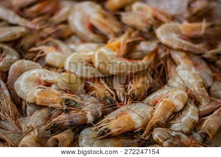 Prawns At The Market On Koh Lanta Island In Thailand