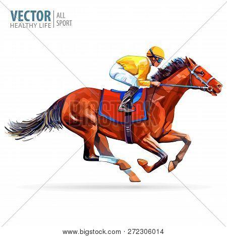 Jockey On Horse. Champion. Horse Racing. Hippodrome. Racetrack. Jump Racetrack. Horse Riding. Racing