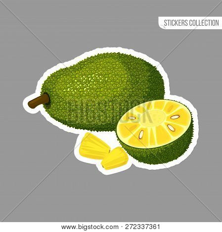 Jackfruit Sticker Isolated On White Background. Bright Vector Illustration Of Colorful Half And Whol
