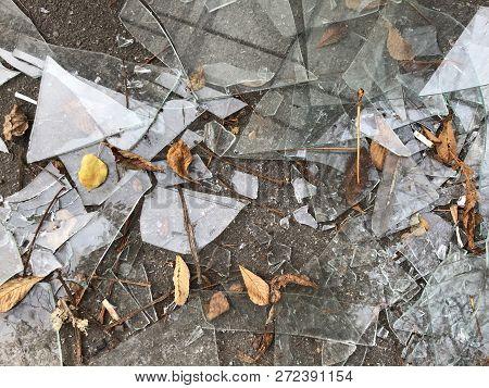 Broken Window In The Street On The Asphalt, Close-up. Pile Of Broken Glass, Asphalt With Orange Leav