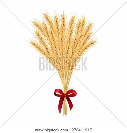 Sheaf Of Wheat. Reap Of Spiked Grain Heads. Christmas Sheaf. Bunch Of Crop Ears. Spikes, Julkarve, J
