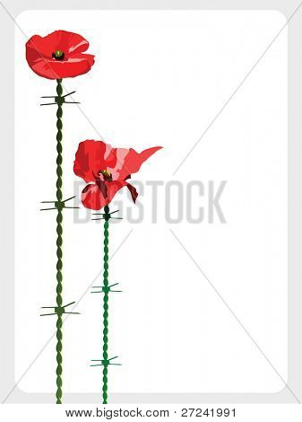 poppies with barbed wire stems symbolizing war and suffering