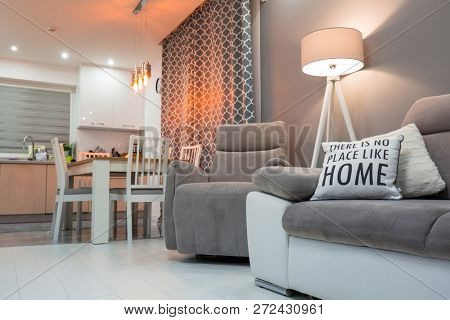 Newly furnished living room with white floor and gray decorations