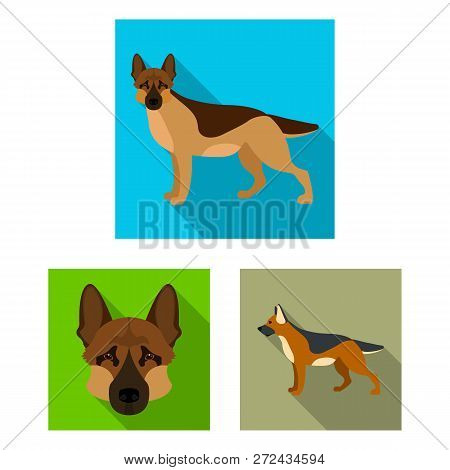 Vector Design Of  And Sheepdog Icon. Set Of  And German Stock Vector Illustration.