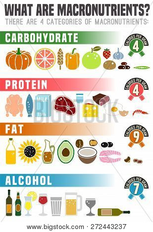 What Are Macronutrients. Carbohydrates, Fats And Proteins In Comparison. Dieting, Healthcare And Eut