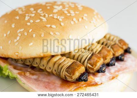 Food Insects: Worm Beetle For Deep-fried As Food Items In Bread Burger Made Of Fried Insect Meat On