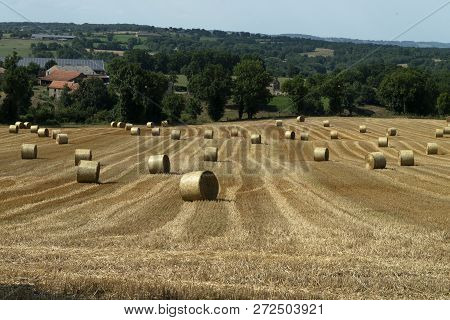 Haymaking In France. Stocking Up For Winter.