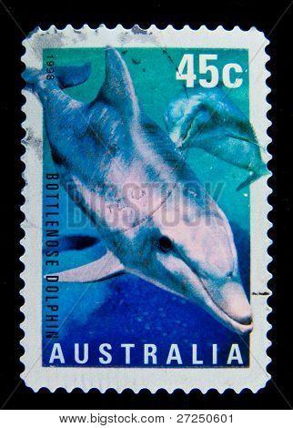 AUSTRALIA - CIRCA 1998: A stamp printed in Australia shows Bottlenose Dolphin - Tursiops aduncus, circa 1998