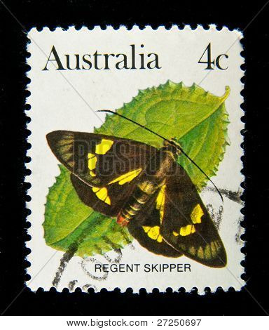 AUSTRALIA - CIRCA 1980s: A stamp printed in Australia shows butterfly Regent Skipper, circa 1980s