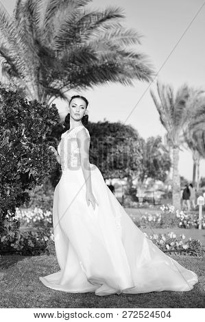 Wedding Concept. Woman In Wedding Dress. Wedding Day Is Here. Wedding Celebration And Reception.