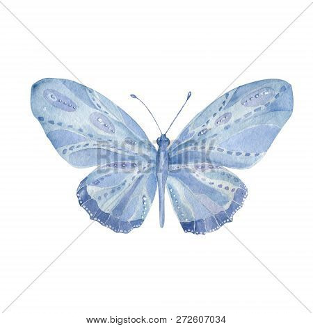 Watercolor Butterfly. Butterfly Aquarelle Aquarelle Butterfly Painting Clip Art Beautiful Character