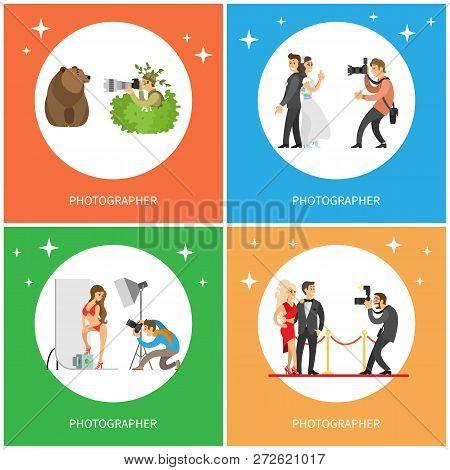 Photographers Hiding In Bushes And Making Picture Of Bear, Woman In Bikini In Photo Studio, Camerama