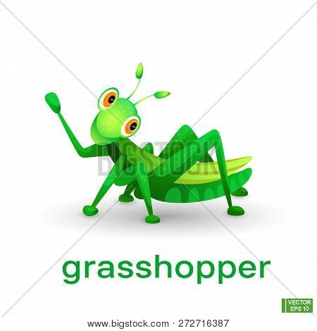 Vector Image Of An Insect. Cute Green Cartoon Character Grasshopper.