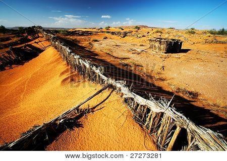 Sand fences in Sahara Desert, Africa