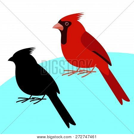 Cardinal Bird , Vector Illustration , Flat Style, Black Silhouette Set