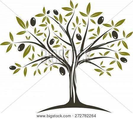 Illustration Of The Single Olive Tree In Fllat Colours