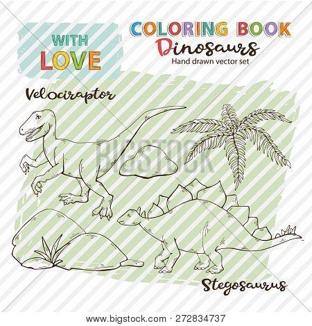 Coloring Book Vector Dinosaurs Velociraptor And Stegosaurus,