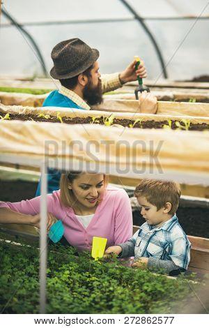 Gardening Master Class. Gardening Master Class For Happy Family. Getting Gardening Master Class In G