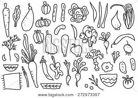 Set Of Vector Vegetables Shape. Collection Of Veg In Doodle Style Isolated On White Background.