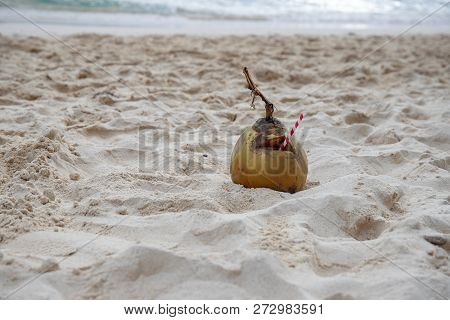 Green Coconut With Paper Straw On Sea Beach Sand. Summer Vacation By Tropical Seaside. South Asia Tr