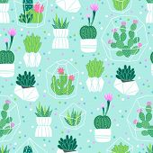 Vector seamless pattern with succulents and cactuses in pots and terrariums. Perfect for gift paper and summer greetings. poster